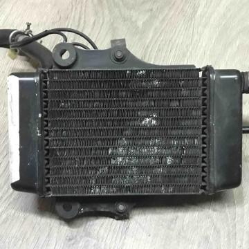 Радиатор охлаждения двигателя Honda SH,@-150